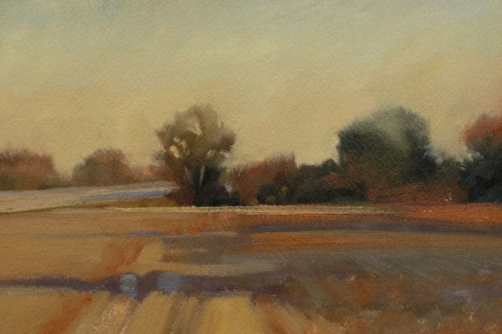 Harvest Fields Study