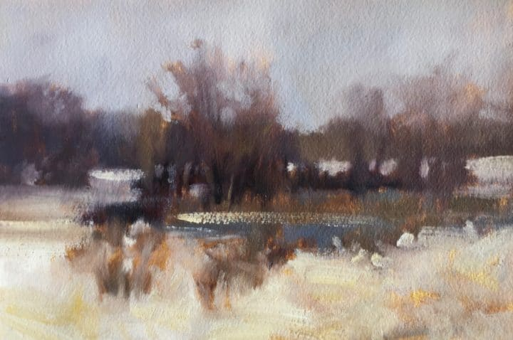 Winter Pond Study