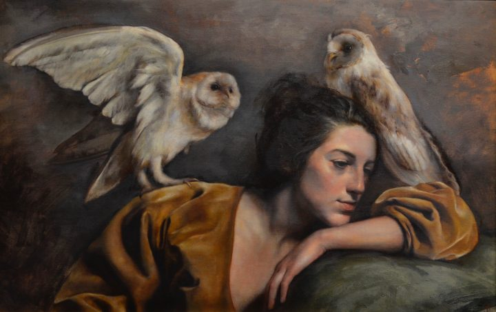 Dream of Owls