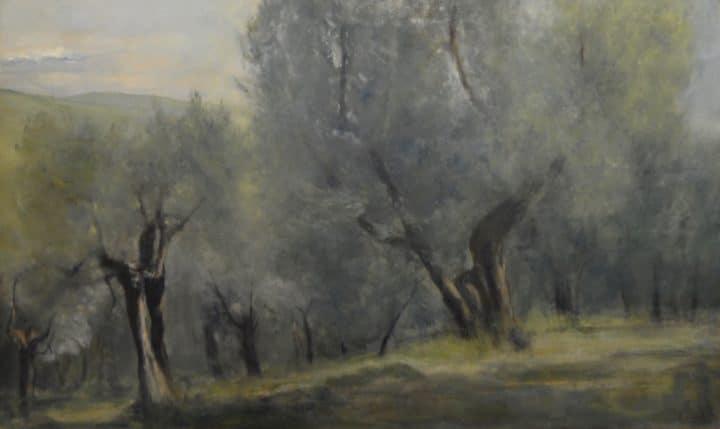Olive Grove, Settignano