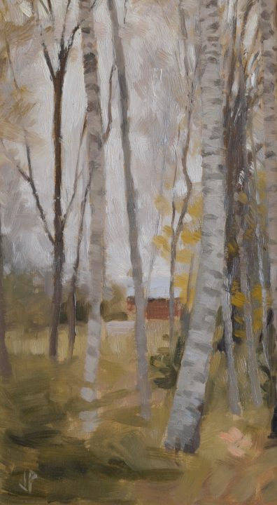 Barn Through the Birches