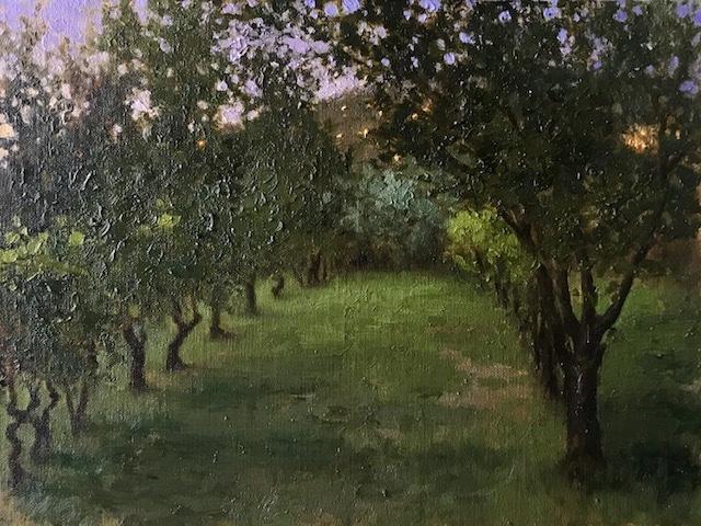 Vineyard at Palmerino