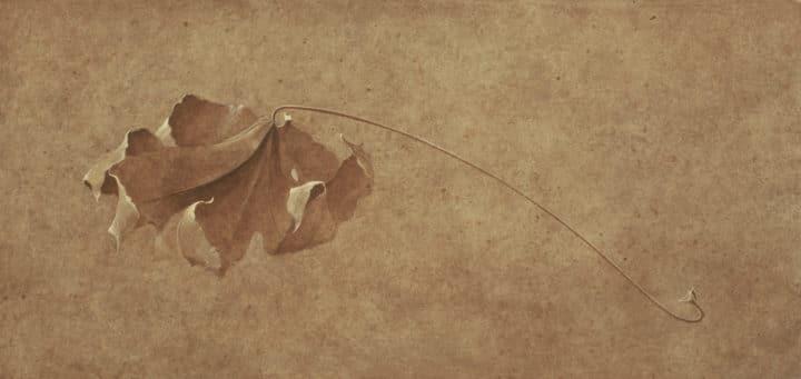 Charleston Leaf