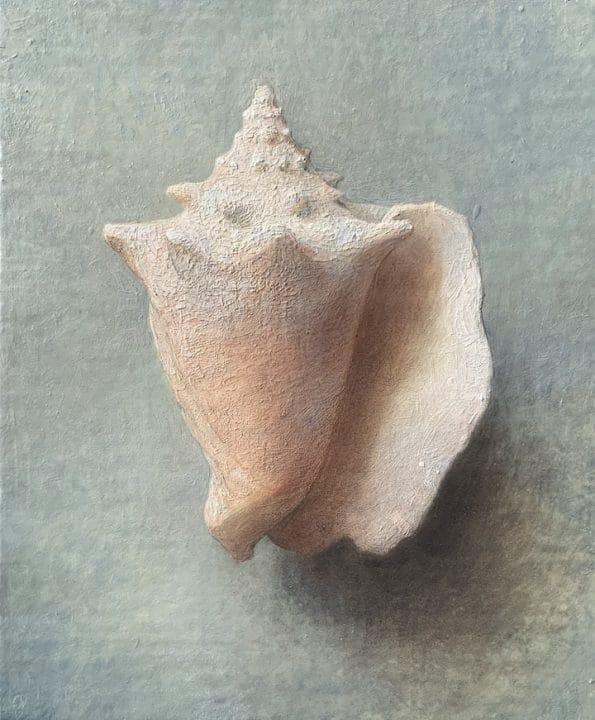Single Shell II