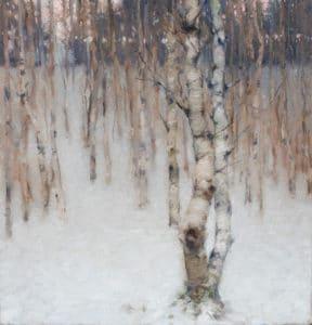 Beech Trees - Winter