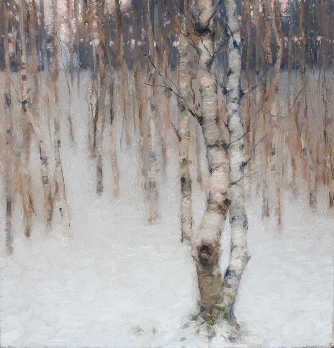 Beech Trees - Winter