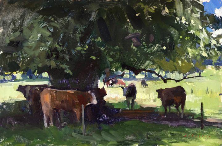 Ballymore Cows