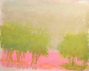 Astonishing Pink Ground