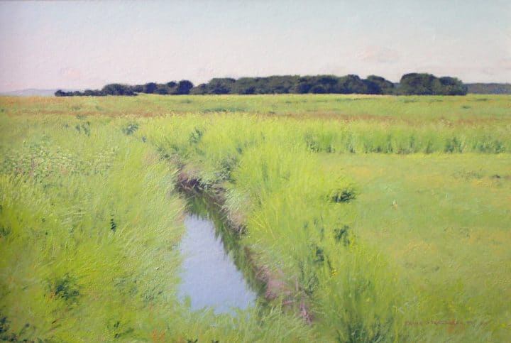 Summer Marshes