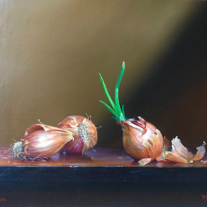 Still Life with Purple Onions